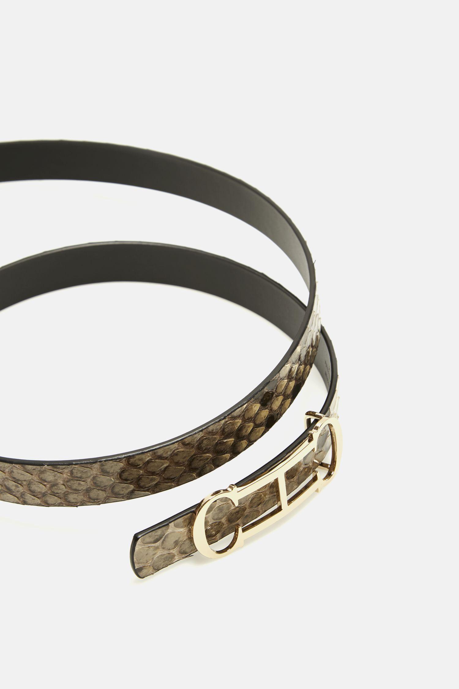 Insignia python belt